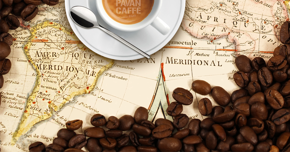 Pavan Caffè Accessories